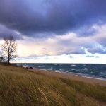 ตามหาใบไม้เปลี่ยนสี ความบริสุทธิ์ และความสุขที่ Michigan
